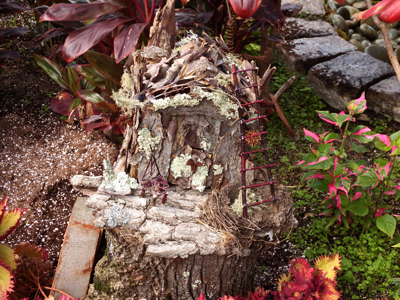 Fairy garden with lichen and a ladder made of sticks