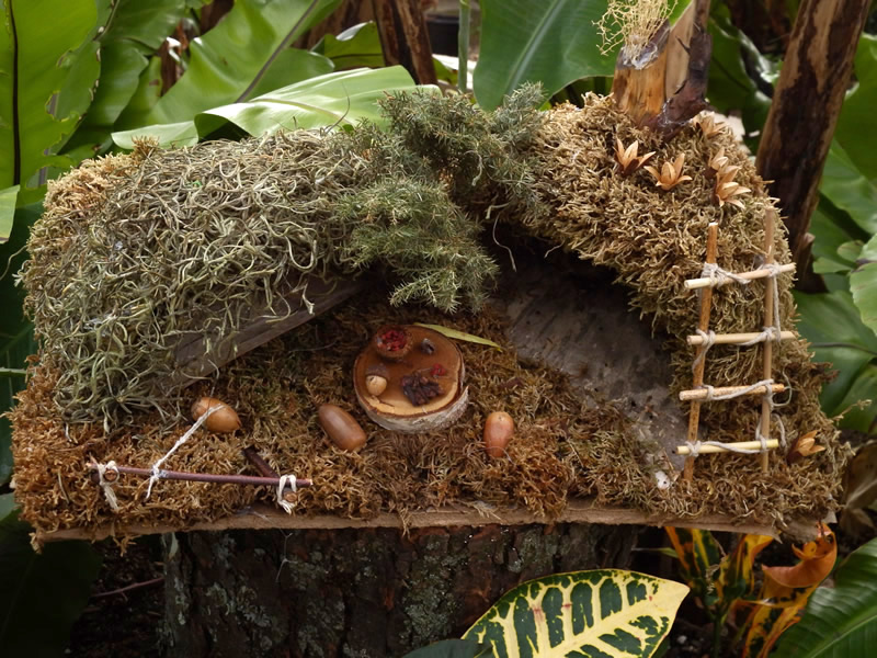 Fairy garden with mosses, stick ladder and miniature food