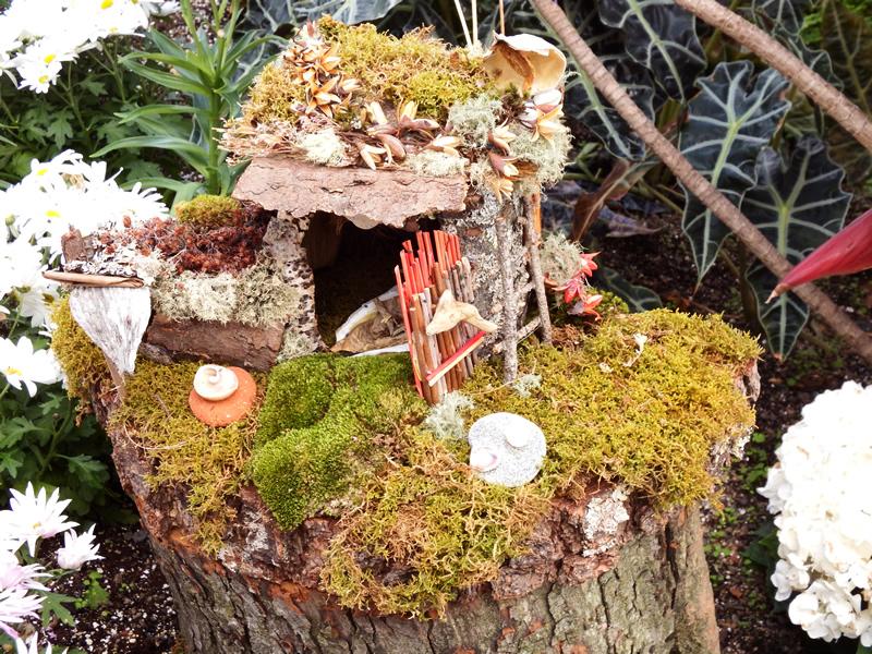 Fairy garden with stick door, moss and milkweed